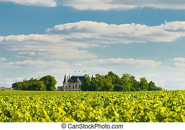 residencia lujosa, y, viña, en, margaux, burdeos, francia