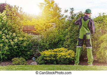 Residential Garden Maintenance