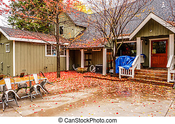 Residential home with garden backyard at autumn rainy day