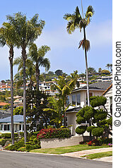 Residential houses on a hillside California.