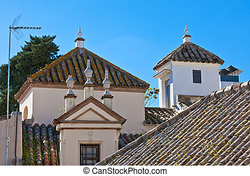 Residential houses roofs in Seville, Spain