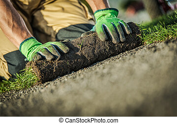 Lawn Grass Installation by Caucasian Gardener