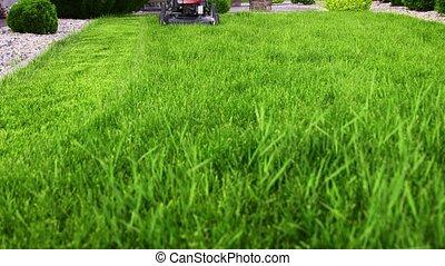 Residential lawn mower - Lawn mower cutting green grass in ...