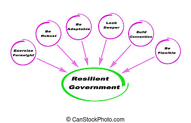 Resilient Government