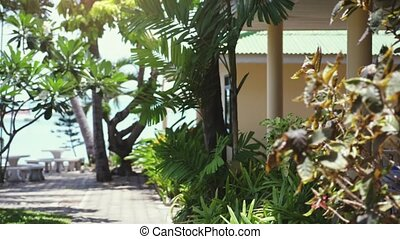 Resort cozy yard on tropical island next to the beach on...
