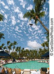 Resort, Fort Lauderdale, Miami, US