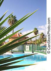 Resort Scenic