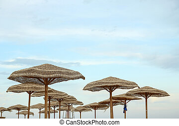 resorts umbrella background