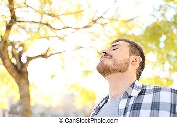 respirar, relaxado, parque, ar, fresco, homem