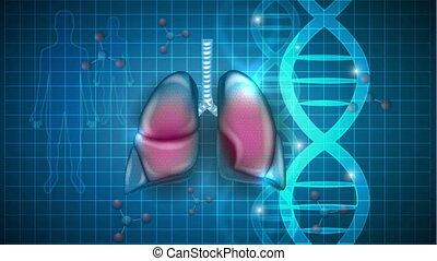 respiratoire, adn, scientifique, chaîne, fond, poumons, atoms., organes
