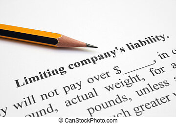 responsabilidad, compañía, limitadora