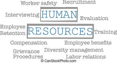ressources humaines, mots, business, étiquette