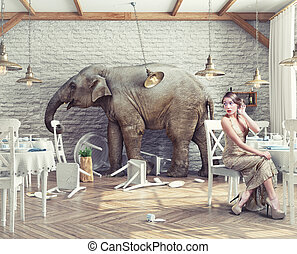 restaurant, éléphant