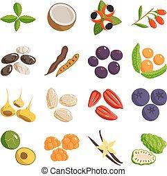 Cuisinier noix coco dessin anim noix coco sur bois for Cuisinier vegetarien