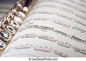 restos, dentro, flauta, raya, musical