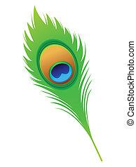 resumen, artístico, pluma de pavo real