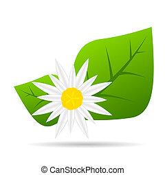 resumen, colorido, flowers., vector, ilustración