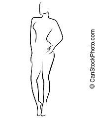 resumen, delgado, cuerpo humano