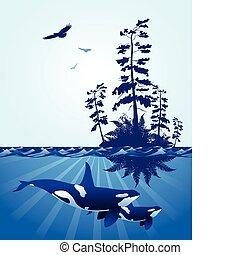 resumen, océano, escena, noroeste pacífico