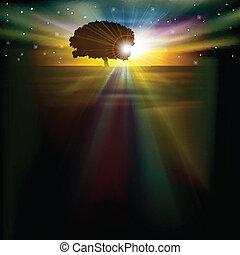 resumen, plano de fondo, con, salida del sol, árbol, y, estrellas