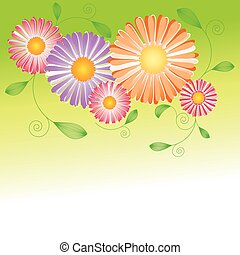 resumen, primavera, colorido, margarita