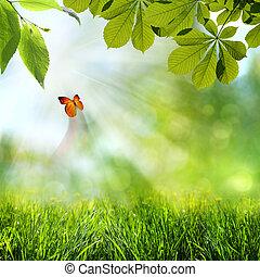 resumen, primavera, y, verano, fondos