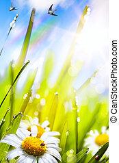 resumen, soleado, hermoso, primavera, plano de fondo