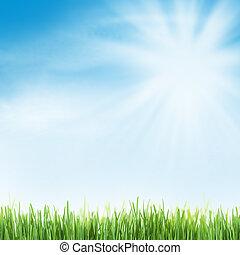 resumen, soleado, verano, plano de fondo