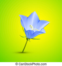 resumen, vector, flor, ilustración, bluebell