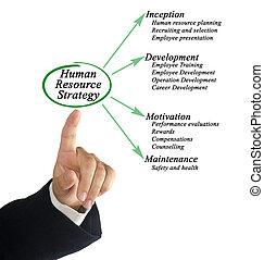 resurs, mänsklig, strategi