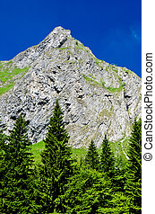 Retezat mountain, Romania