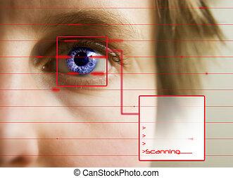 retina escudriña
