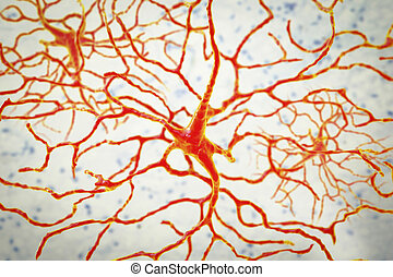 Retinal neuron, a neuron that plays crucial role in vision, it transforms the optical image in order to extract visual information, 3D illustration