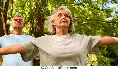 Retired couple doing yoga outside