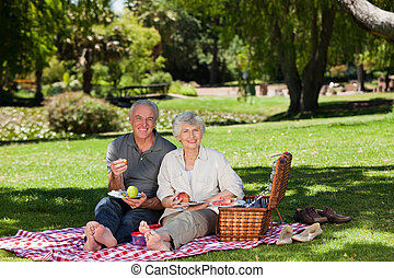 Retired couple  picnicking in the g
