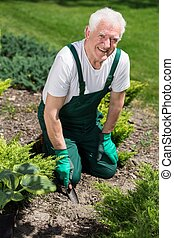 Retired man cultivating the garden