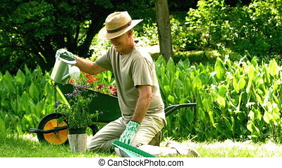 Retired man watering his plant in slow motion