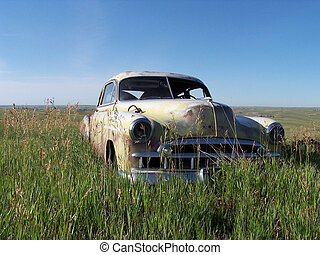 Digital shot of an old 1949 Chevy sedan rusting in a secluded pasture.