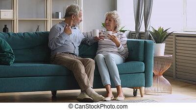 Retired senior couple talking drinking tea in living room ...