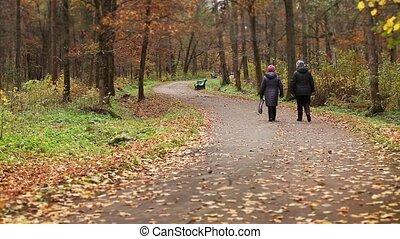 retirees walking youth jogging on a path  an autumn park