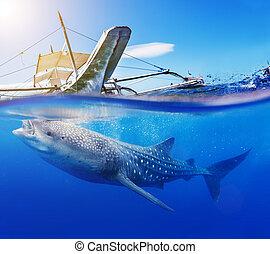 retoño, submarino, tiburón, ballena