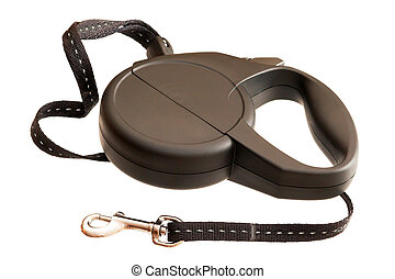 Retractable leash for dog isolated on white background