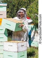 retrato, apicultor, abejera, trabajando