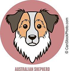 retrato, australiano, vetorial, shepherd., ilustração