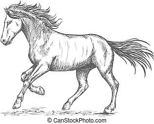 retrato, caballo, stmping, pezuña, cabriolar