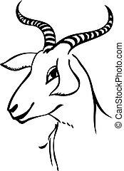 retrato, cabra
