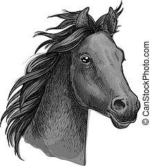 retrato, cavalo, cabeça, esboço, artisticos