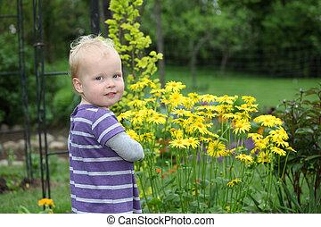 retrato, de, um, feliz, toddler, jardim