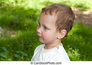 retrato, de, um, menino jovem, em, natureza