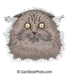 retrato, dibujado, mano, gato